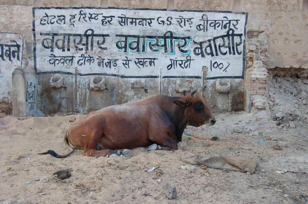 Cosas que no te gustarán en India - La suciedad