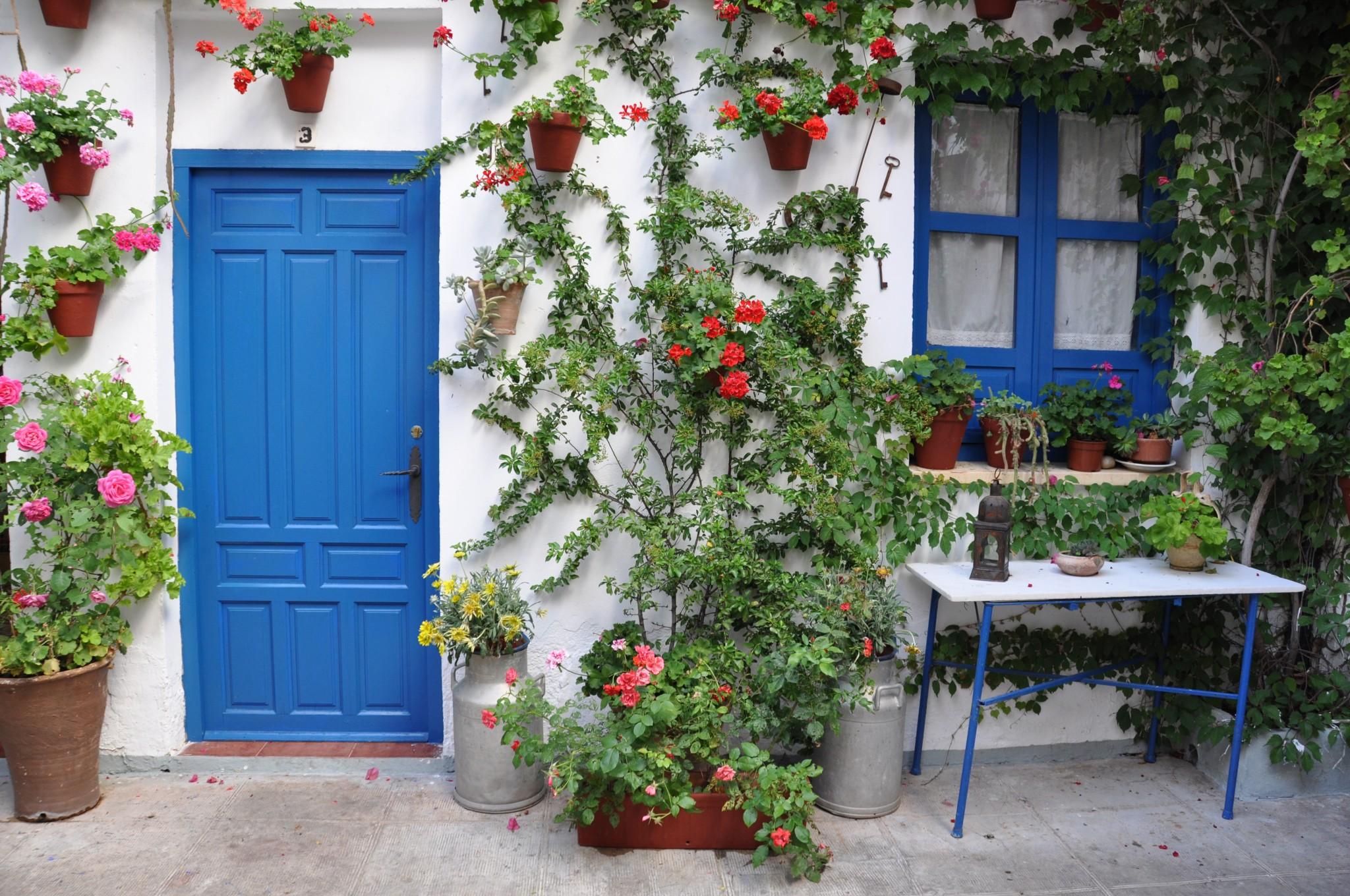 Festival de los patios de Córdoba - Kris por el mundo - Blog de viajes y foto...