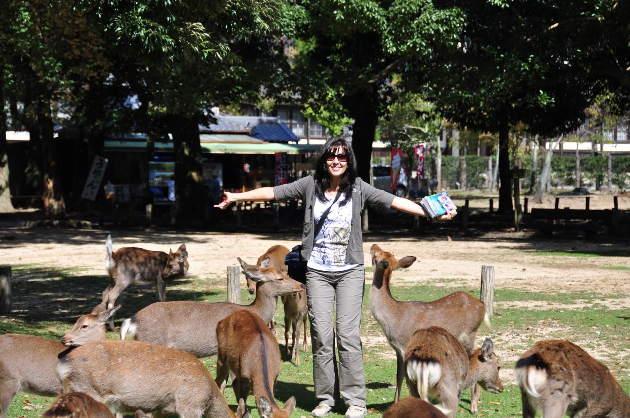 Nara Parque Nara koen
