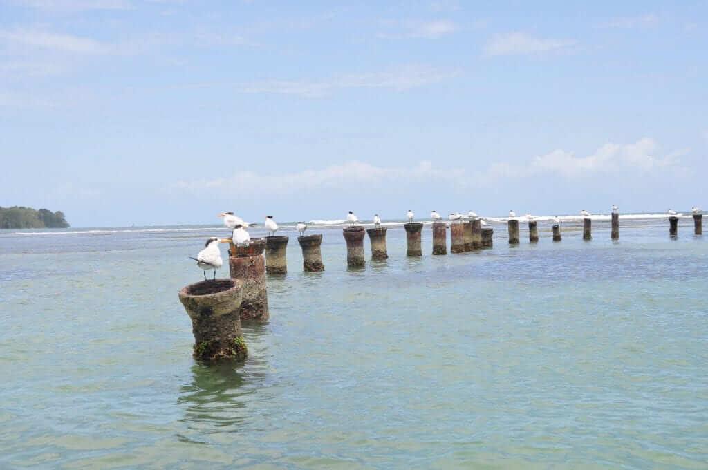 Fotos de Panama