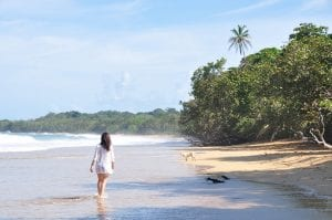 Playa Bluff, Bocas del Toro