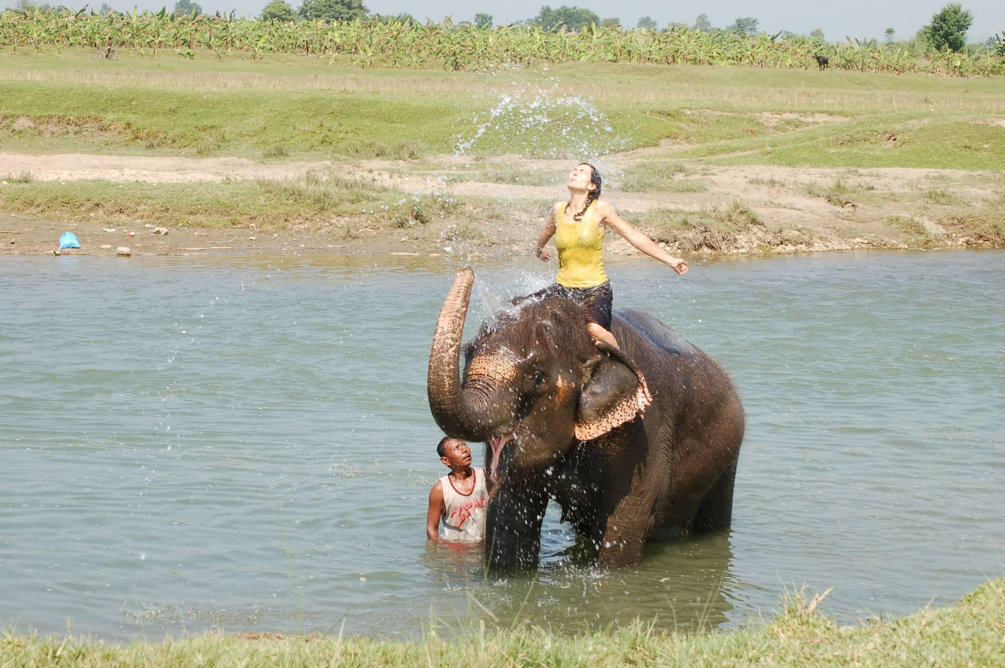 Nepal Bañar elefantes