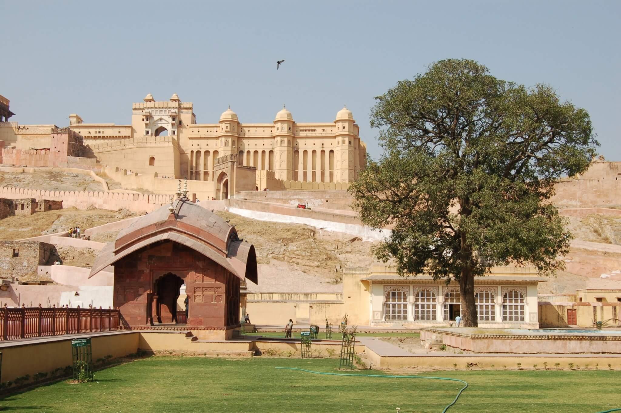 Jaipur Fuerte Amber