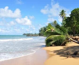 El Yunque y Playa de Luquillo