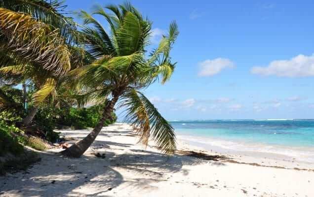Playa Flamenco